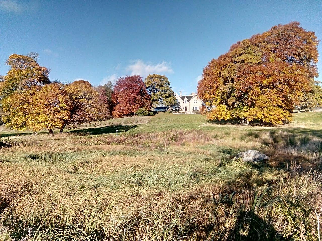 Autumn at Muckrach
